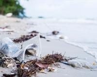 21 Eylül Dünya Temizlik Günü
