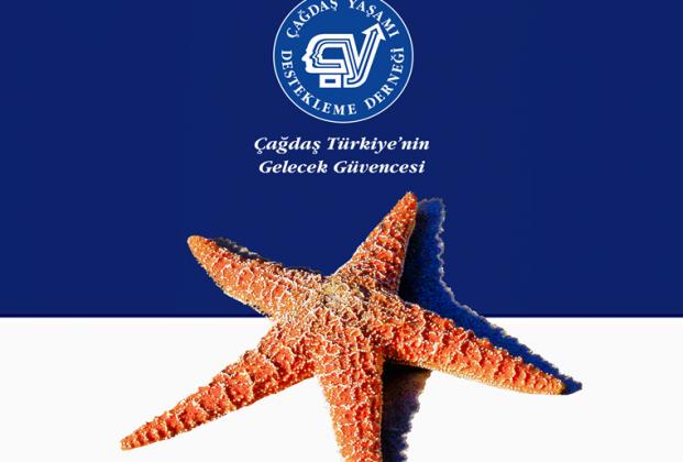 cydd-denizyildizi-projesi-yeniden-basliyor